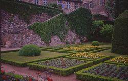 Jardin Jardin Wilson Montlucon