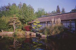 Jardin jardin japonais de l 39 ile de versailles nantes for Le jardin japonais nantes