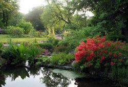 Jardin jardin d 39 altitude du haut chitelet xonrupt longemer - Jardin d altitude du haut chitelet ...