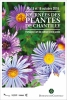 Journ�es des plantes de Chantilly - 2016