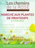 March� aux plantes de printemps - 2015