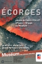 - Ecorces, photos de Cédric Pollet - 2012  - 1147