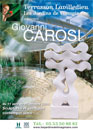 - Giovanni Carosi, sculptures et peintures contemporaines  - 2009  - 304
